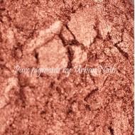 Pigment Brons (16)