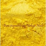 Pigment Goud Geel (23)
