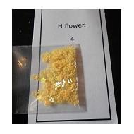 h flowers 4