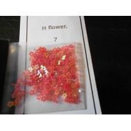 h flowers 7