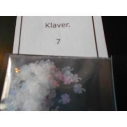 Klavertje 7