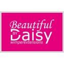 Beautiful by Daisy