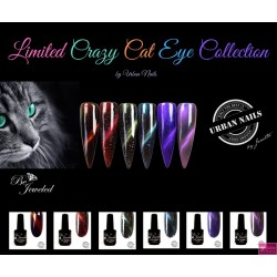 limited crazy cat eye collection 6 stuks